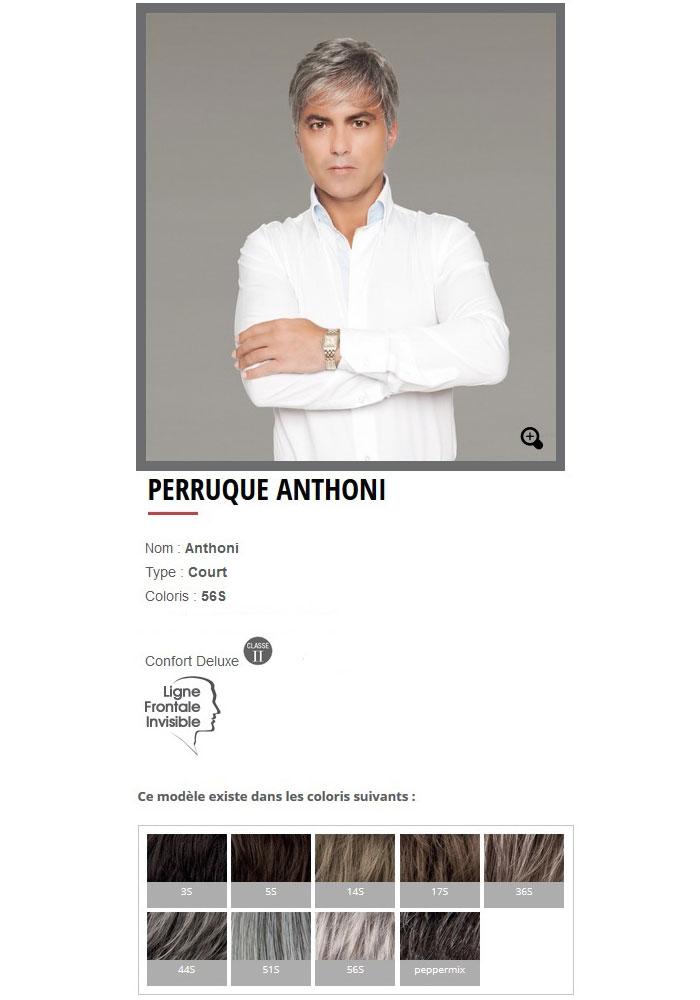 """Perruque """"Anthoni"""""""